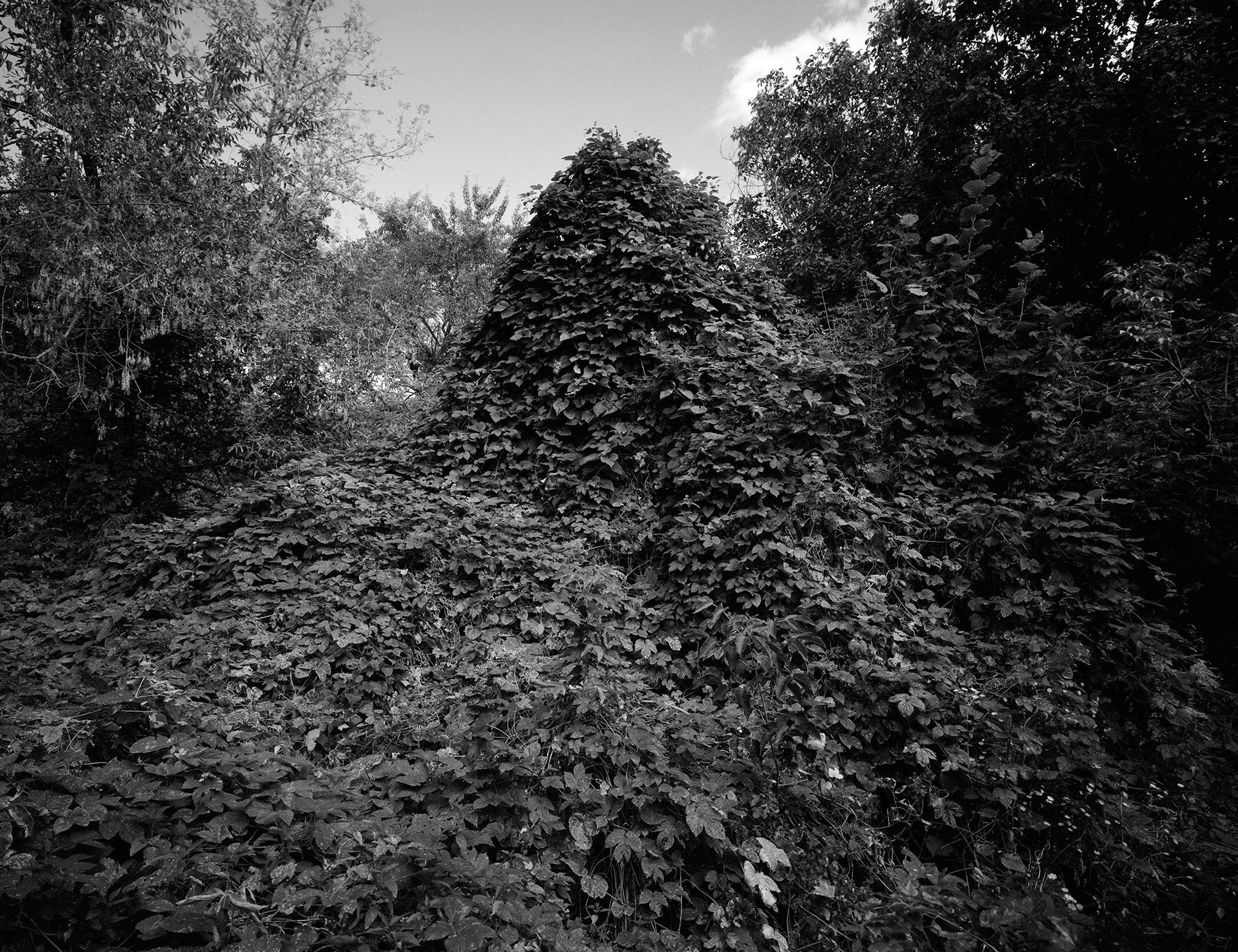 kreidler-third-landscape-chernobyl-exclusion-zone